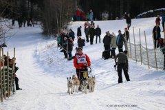 Todtmoos2007_Greylikewolves20.jpg