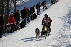 Todtmoos2007_Greylikewolves4.jpg