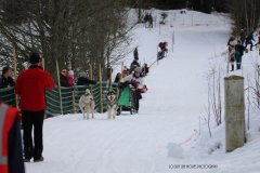 Todtmoos2007_Greylikewolves40.jpg