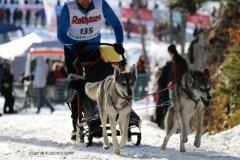 Todtmoos2007_Greylikewolves50.jpg