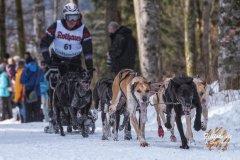 Internationales_Schlittenhunderennen_Todtmoos_23_von_49.jpg