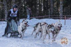 Internationales_Schlittenhunderennen_Todtmoos_40_von_49.jpg