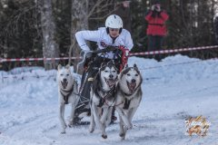 Internationales_Schlittenhunderennen_Todtmoos_45_von_49.jpg